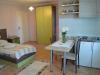 zlatibor-vila-sladjan-apartman-3